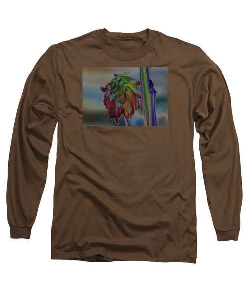 Something Special Long Sleeve T-Shirt