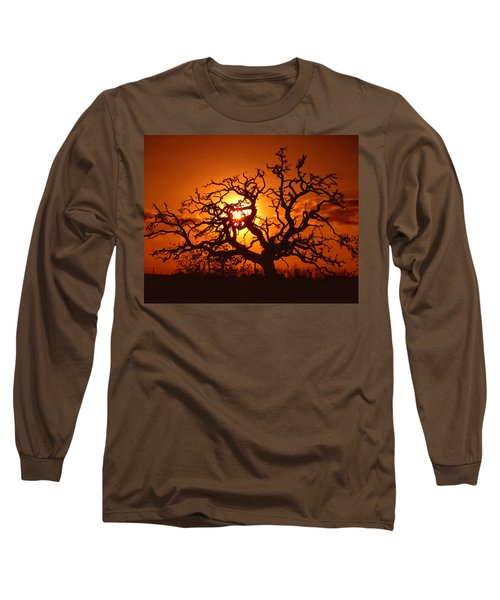 Spooky Tree Long Sleeve T-Shirt by Stephen Anderson