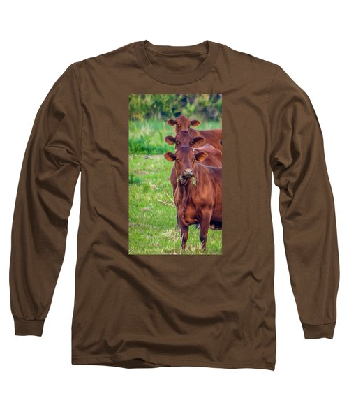 Stacked Up Cows          Long Sleeve T-Shirt
