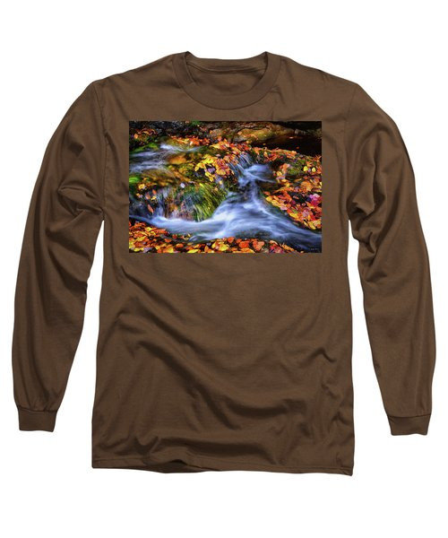 Standing In Motion - Leaves On A Rock 007 Long Sleeve T-Shirt by George Bostian