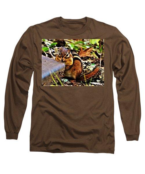 Storing For Winter Long Sleeve T-Shirt