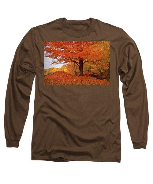 Sturdy Maple In Autumn Orange Long Sleeve T-Shirt