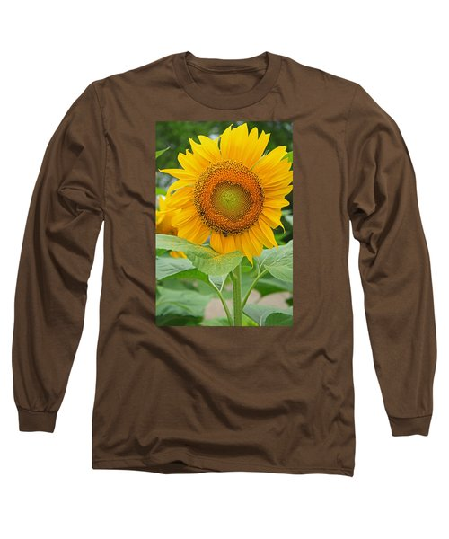 Sunflower Long Sleeve T-Shirt by Ronald Olivier