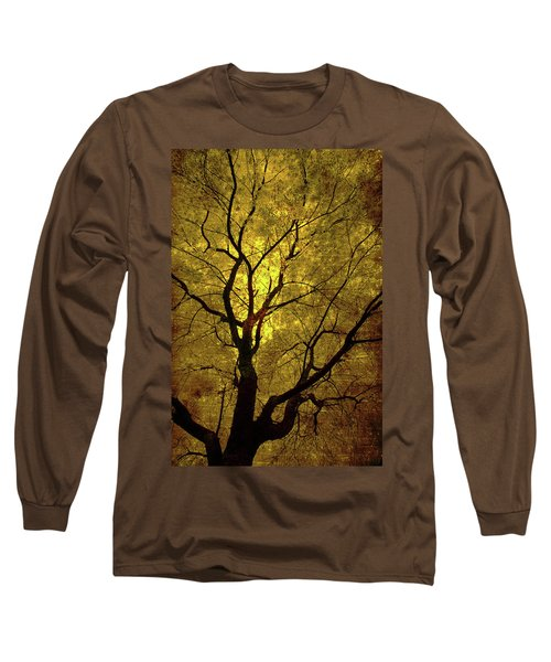 Sunny Branches Long Sleeve T-Shirt by Gray  Artus