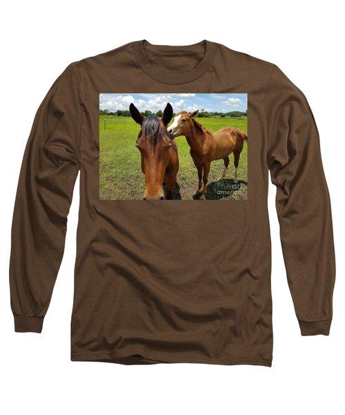 Sweet Horses  Long Sleeve T-Shirt