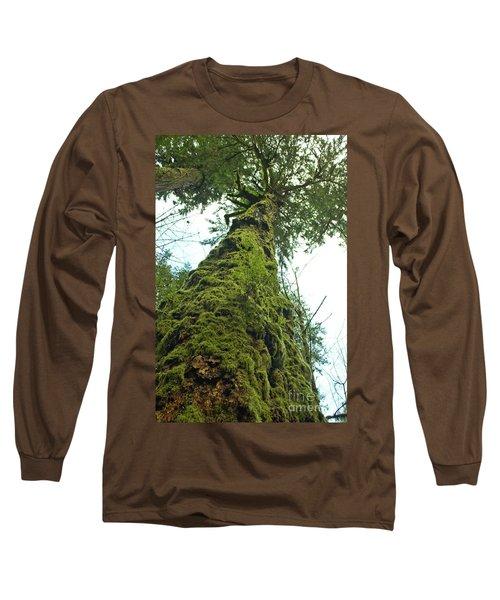 Tall Tall Tree Long Sleeve T-Shirt