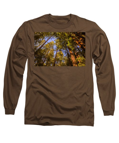 The Portola Redwood Forest Long Sleeve T-Shirt