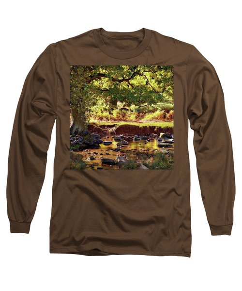 The River Lin , Bradgate Park Long Sleeve T-Shirt by John Edwards