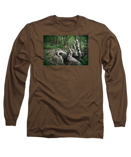 The Root Long Sleeve T-Shirt by Gary Smith