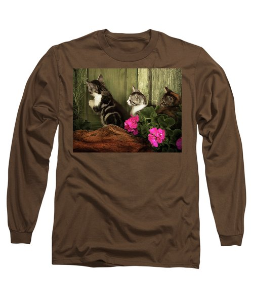 Three Cute Kittens Waiting At The Door Long Sleeve T-Shirt