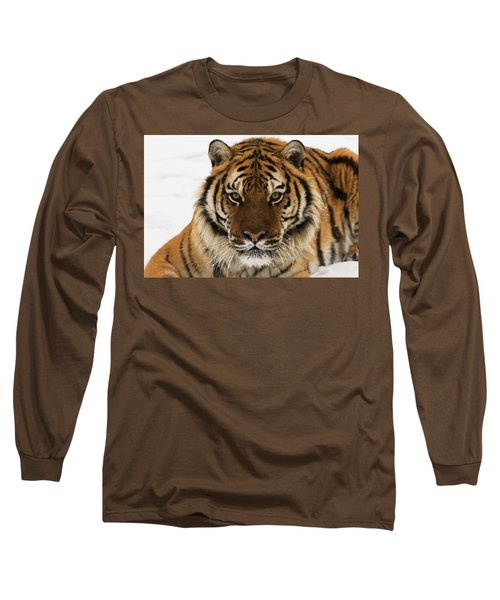 Tiger Stare Long Sleeve T-Shirt