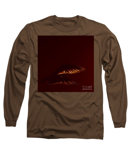 Transiently Translucent Long Sleeve T-Shirt