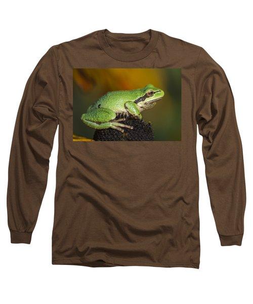 Treefrog On Rudbeckia Long Sleeve T-Shirt