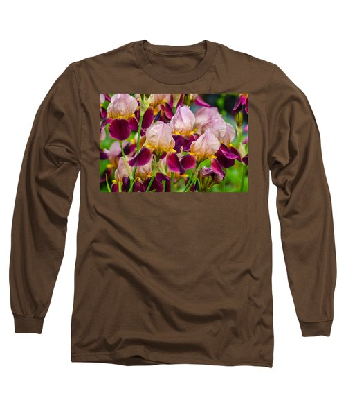 Tricolored Irisses Long Sleeve T-Shirt by Rainer Kersten