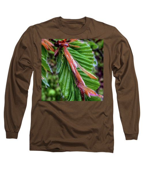 Beech  Long Sleeve T-Shirt by Majse Tange