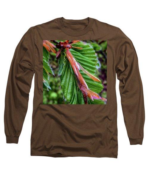 Beech  Long Sleeve T-Shirt