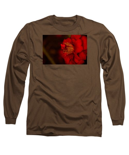 Virtuoso  Long Sleeve T-Shirt by John Harding