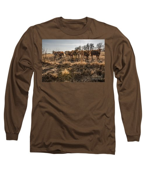 Long Sleeve T-Shirt featuring the photograph Welcoming Committee by Sue Smith
