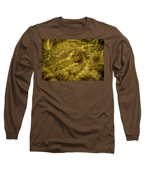 Western Diamondback Rattlesnake Long Sleeve T-Shirt by Anne Rodkin