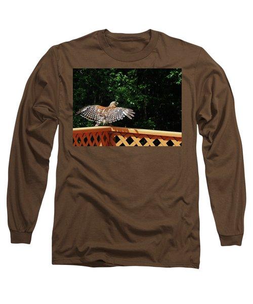 Wingspan Of Hawk Long Sleeve T-Shirt