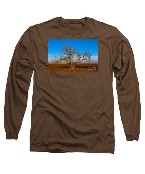 Winter Apple Tree Long Sleeve T-Shirt by Suzanne Lorenz