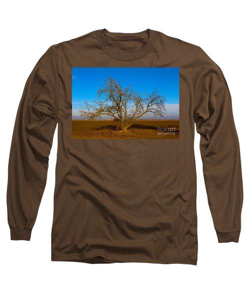 Winter Apple Tree Long Sleeve T-Shirt