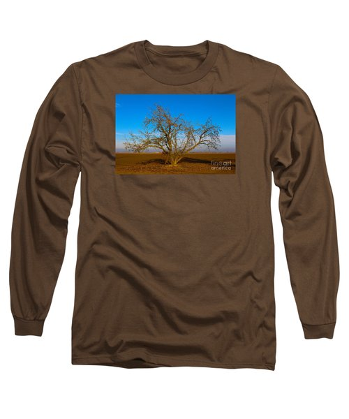 Winter Apple Tree Long Sleeve T-Shirt