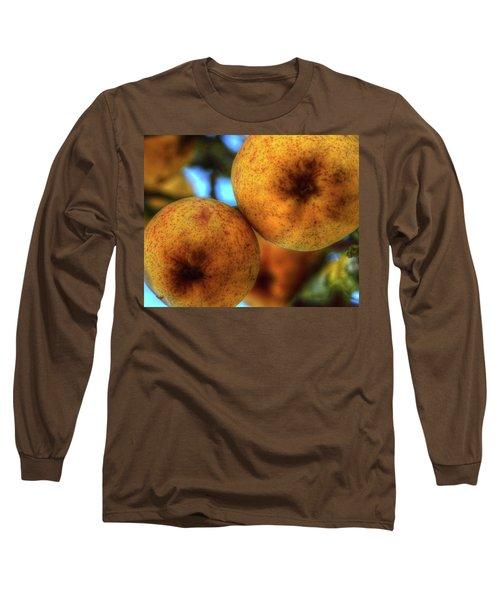 Winter Apples 2 Long Sleeve T-Shirt