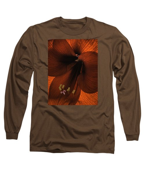 Winter Sunshine Long Sleeve T-Shirt by Cathy Donohoue