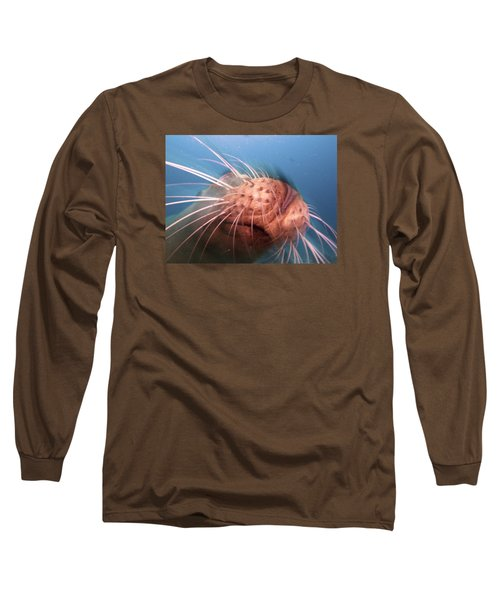 Wiskers And A Nose Of Sea Lion Long Sleeve T-Shirt