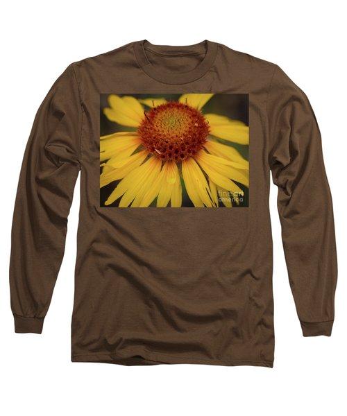 Yellow Cone Flower Long Sleeve T-Shirt by John Roberts