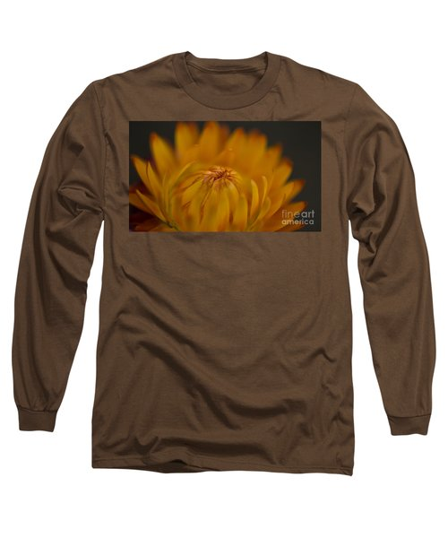 Yellow Strawflower Blossom Close-up Long Sleeve T-Shirt