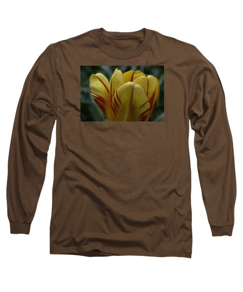 Yellow Tulip  Long Sleeve T-Shirt by Andre Faubert