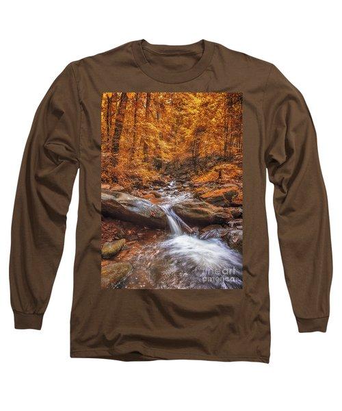 Amicalola Falls Long Sleeve T-Shirt