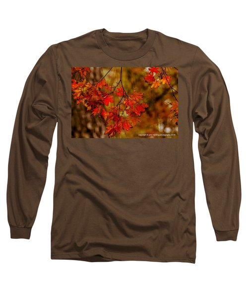A Branch Of Autumn Long Sleeve T-Shirt
