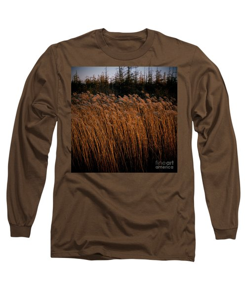 Evening Light Long Sleeve T-Shirt
