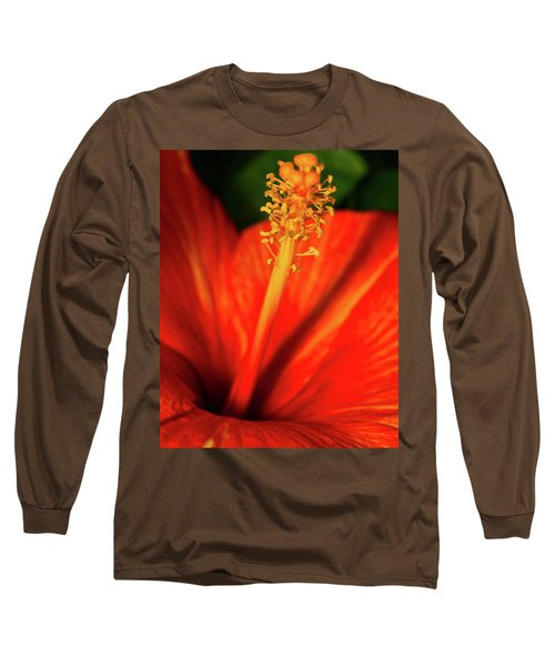 Into A Flower Long Sleeve T-Shirt