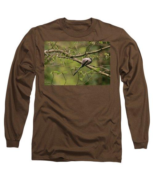 Long Tailed Tit Long Sleeve T-Shirt
