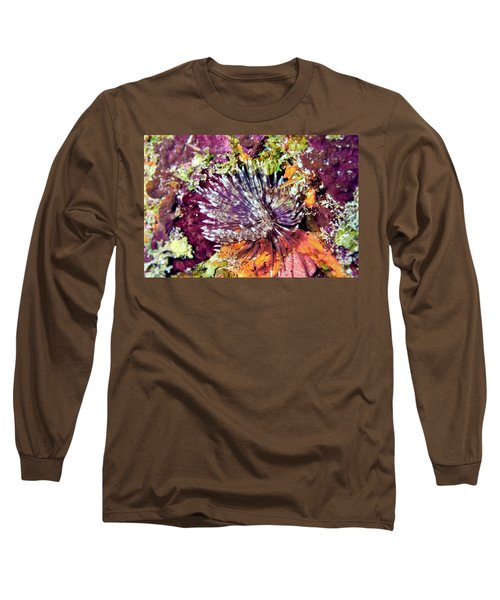 Magnificent Feather Duster Long Sleeve T-Shirt