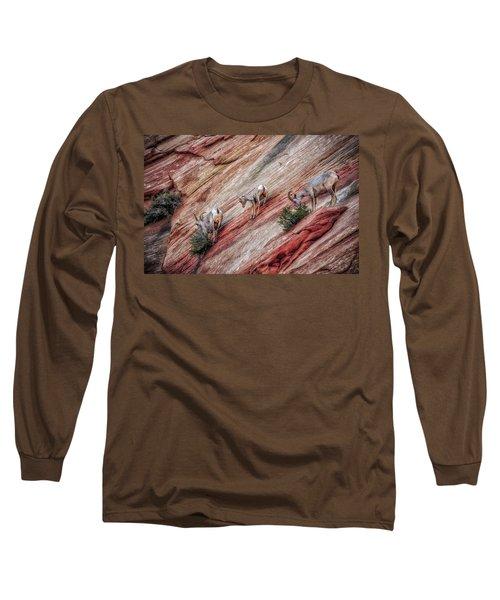 Nimble Mountain Goats 5694 Long Sleeve T-Shirt