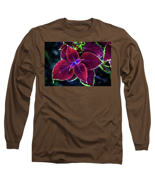 Plum Tones Long Sleeve T-Shirt