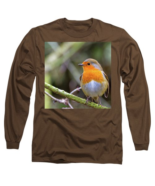 Robin. On Guard Long Sleeve T-Shirt