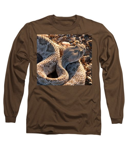 Long Sleeve T-Shirt featuring the photograph Serpent Of The Southwest by Judy Kennedy