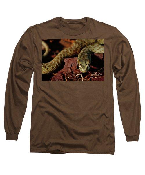 Wild Snake Malpolon Monspessulanus In A Tree Trunk Long Sleeve T-Shirt