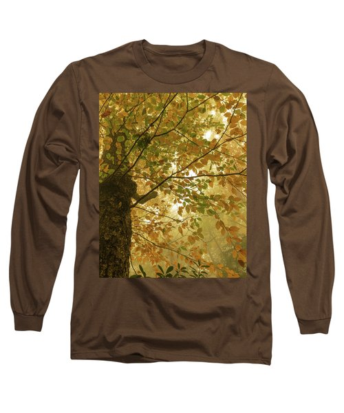 Yellow Fall Leaves - Blue Ridge Parkway Long Sleeve T-Shirt