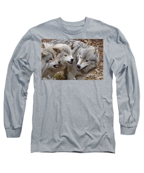 Long Sleeve T-Shirt featuring the photograph  Alpha Displeasure 2 by Wolves Only