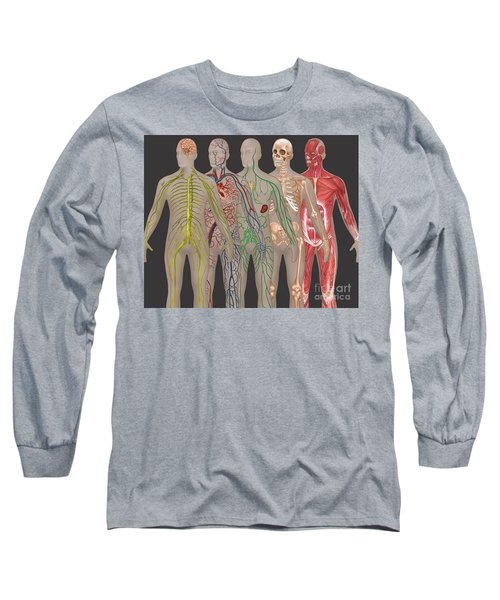 5 Body Systems In Male Anatomy Long Sleeve T-Shirt