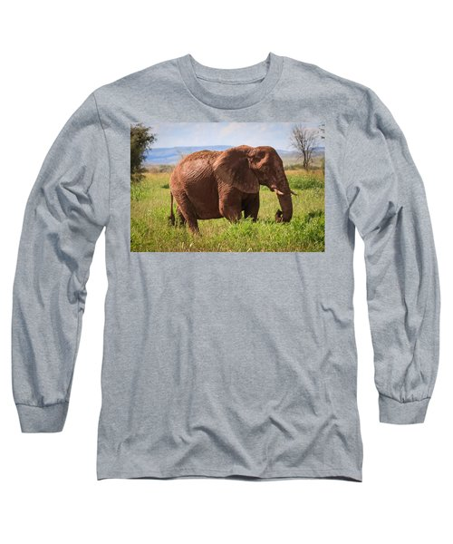 African Desert Elephant Long Sleeve T-Shirt