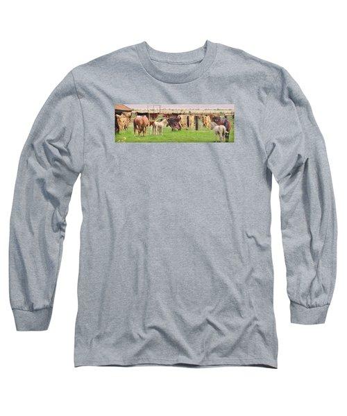 Cow Hides Long Sleeve T-Shirt by Marilyn Diaz