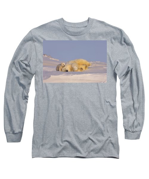 Female Polar Bear Cleans Her Coat Long Sleeve T-Shirt